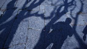 Horror effect shot of tree shadow stock video footage