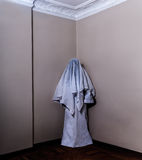 Horror Ghost Royalty Free Stock Photos