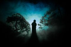 Horror Halloween decorated conceptual image. Alone girl with the light in the forest at night. Silhouette of girl standing between. Trees with surreal light on Stock Photos