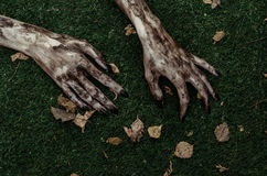 Horror and Halloween theme: Terrible zombie hands dirty with black nails lie on the green grass, the walking dead apocalypse, top Royalty Free Stock Photography