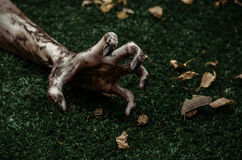 Horror and Halloween theme: Terrible zombie hands dirty with black nails lie on the green grass, the walking dead apocalypse, top. View studio stock photo