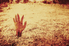 Horror hand of a zombie awakening Stock Photo
