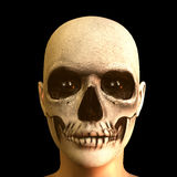 Horror  Head. 3d rendering of a  painted skull  as illustration Royalty Free Stock Images