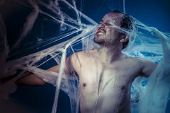 Horror, naked man trapped in a huge spider web Stock Photo