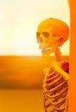 Horror, okrucieństwo, śmiertelny pojęcie: ludzki czaszka urlop na ścianie w Obrazy Royalty Free