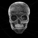 Horror pajęczyny czaszka Obraz Stock