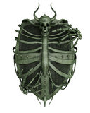 Horror shield. A fantasy themed iron shield with a monsters skull and bones engraved Stock Images