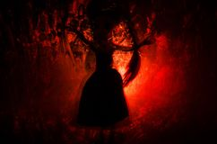 Horror silhouette of girl behind the matte glass blood stain. Blurry hand and body figure abstraction. Background with fire. Selective focus Stock Photo