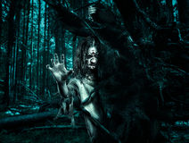 Horror undead woman looks out from behind a tree. Stock Photography