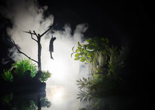 Horror view of hanged girl on tree at evening (at night) Suicide decoration. Death punishment executions or suicide abstract idea. Different background Royalty Free Stock Photo