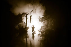 Horror view of hanged girl on tree at evening (at night) Suicide decoration. Death punishment executions or suicide abstract idea. Different background Royalty Free Stock Images
