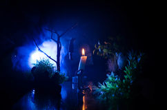 Horror view of hanged girl on tree at evening (at night) Suicide decoration. Death punishment executions or suicide abstract idea. Different background Royalty Free Stock Photography