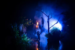 Horror view of hanged girl on tree at evening (at night) Suicide decoration. Death punishment executions or suicide abstract idea. Different background Stock Photography