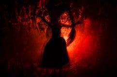Horrorschattenbild des Mädchens hinter dem Mattglasblutfleck Undeutliche Hand und Körperzahl Abstraktion Hintergrund mit Feuer Stockfoto