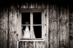 Horrorszene einer furchtsamen Frau Lizenzfreies Stockfoto