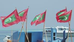 Hors-bord et drapeaux banque de vidéos