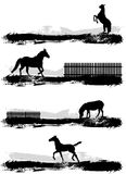 Horse. 4 different horse silhouette vector Stock Photos