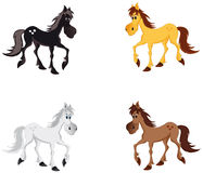 Horse. Vector illustration depicting four horses stock illustration