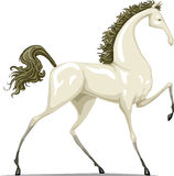 Horse. The white horse on a white background, vector Royalty Free Stock Photo