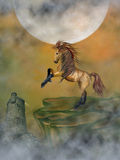 Horse. In a cliff with castle Stock Photography