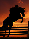 Horse. Silhouette of a rider on a jumping horse Royalty Free Stock Photos