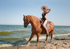 Horse. Girl rides on horse in the sea royalty free stock photos