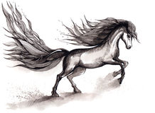 Horse. Beautiful and strong horse (Cbm painting royalty free illustration