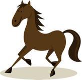 Horse Stock Photos