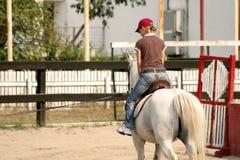 Horse. A girl riding a horse Stock Photo