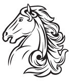 Horse. Head, mustang head, beautiful Royalty Free Stock Images