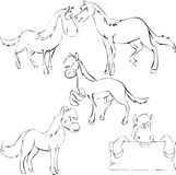 Horse. Doodle sketch illustration of horses Royalty Free Stock Image