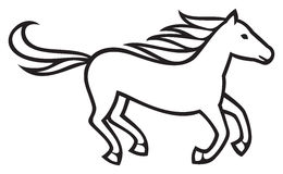 Horse. Beautiful horse running, running horse Royalty Free Stock Image