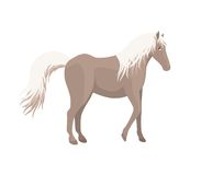 Horse. An illustration of a brown horse with white tail and mane on a white background.  Also available as a vector Stock Photo