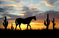 Horse. (See more in my portfolio Royalty Free Stock Photography