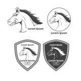 Horse2 Imagem de Stock Royalty Free
