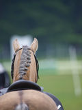 Horse Abstract Royalty Free Stock Photography