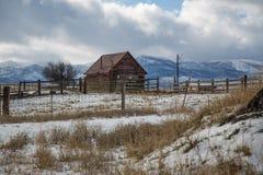 Horse Alone. Prairie City, Oregon Stock Photography