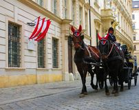 Horse and carriage in Vienna Royalty Free Stock Photo