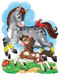 Horse And Pony Running At The Meadow Cartoon Illustration Stock Photography