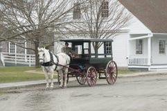 A horse with an antique carriage. Stock Photos