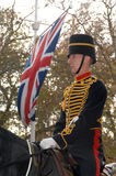 Horse Artillery trooper. A trooper of the Royal Horse Artillery on parade. Armistice day, November 11, 2007 Royalty Free Stock Photos