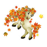 Horse autumn Stock Photo
