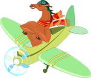 Horse-aviator. In an airplane Stock Photography