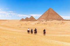 Horse-back het berijden dichtbij de Grote Piramides, Giza, Egypte stock foto's