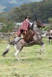 Horse back riding cowboy wearing furry chaps and wool poncho. June 3, 2017 Machachi, Ecuador: cowboy wearing furry chaps and traditional striped poncho on royalty free stock photos