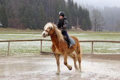 Horse back riding in winter Royalty Free Stock Photography