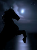 Horse on background of moon and sea Stock Photo