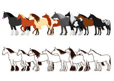 Horse banner set Stock Photo