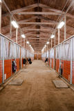 Horse Barn Animal Sport Paddock Equestrian Ranch Racing Stable Stock Images