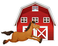 Horse and barn Royalty Free Stock Photos
